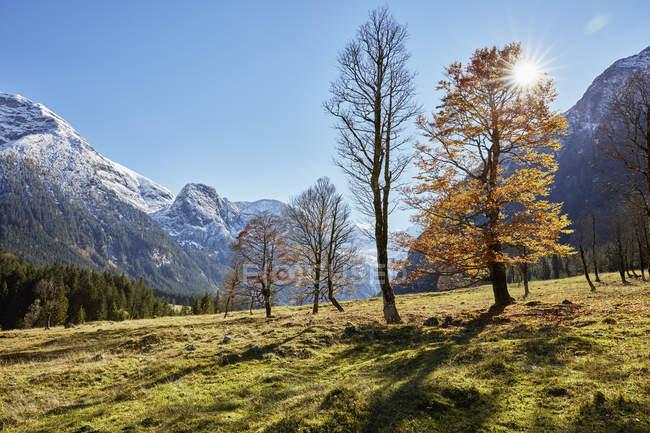 Солнечный пейзаж с далеких снега ограничен горы — стоковое фото