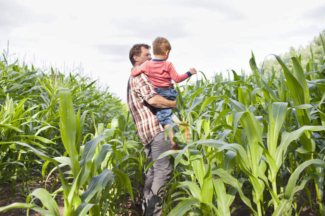 Farmer and son in field of crops — Stock Photo