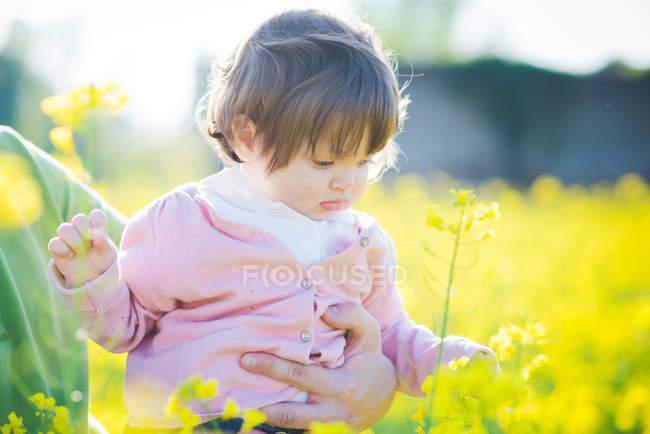 Жіночий малюк торкається жовтих квіток у полі. — стокове фото