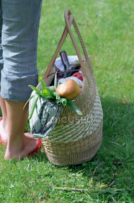 Bild der Picknick-Korb auf dem Rasen in der Nähe von Frau zugeschnitten — Stockfoto