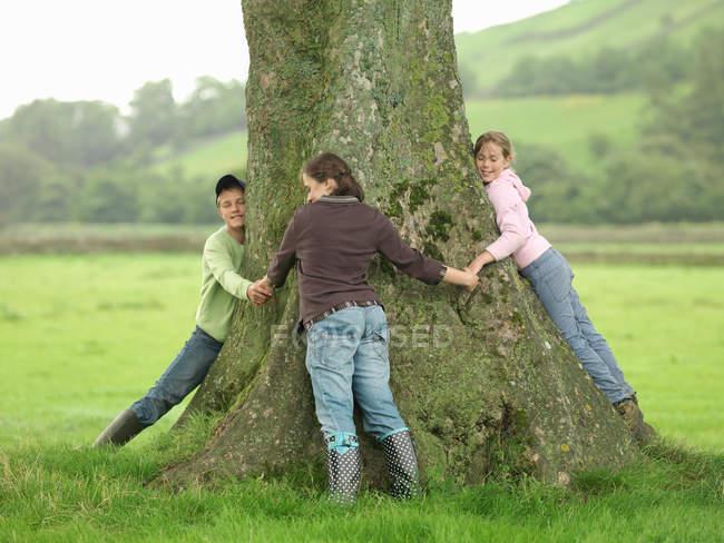 Kinder umarmen Baum auf Bauernhof — Stockfoto