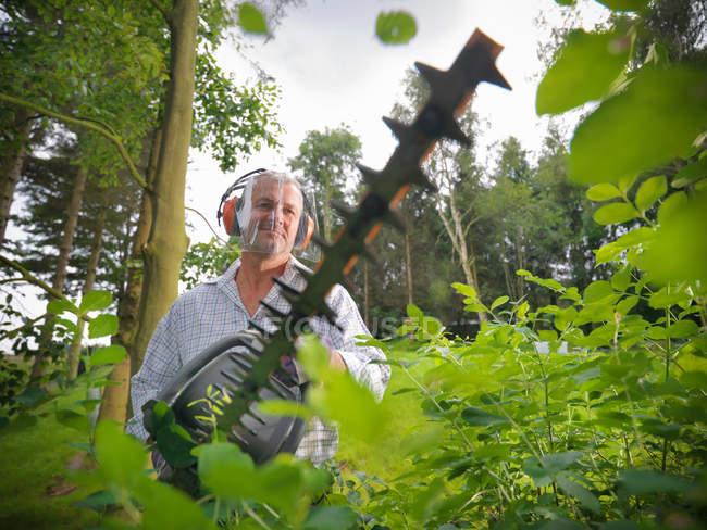 Садівник носіння вухо захисників і козирок за допомогою садові ножиці — стокове фото
