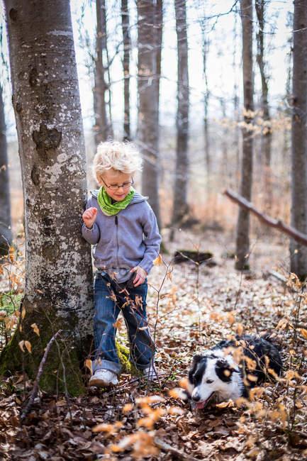 Garçon et chien explorant dans la forêt — Photo de stock