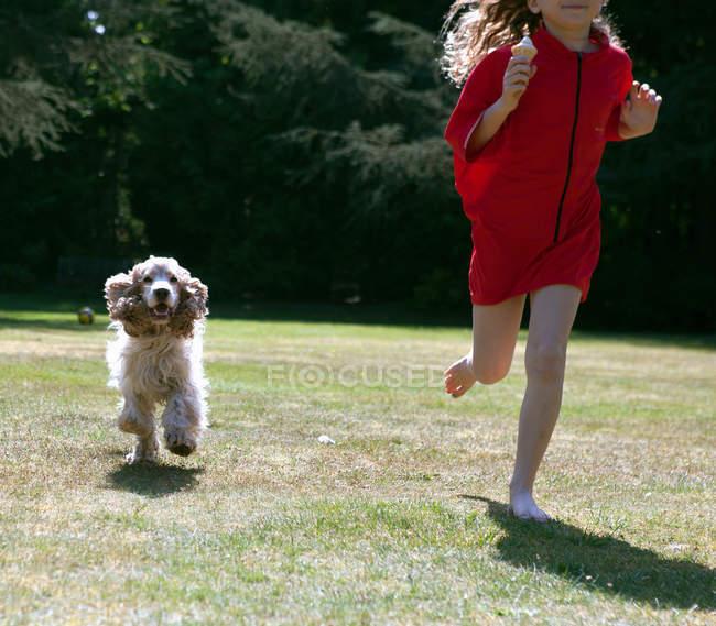 Девушка играет с собакой на заднем дворе, обрезанный вид — стоковое фото