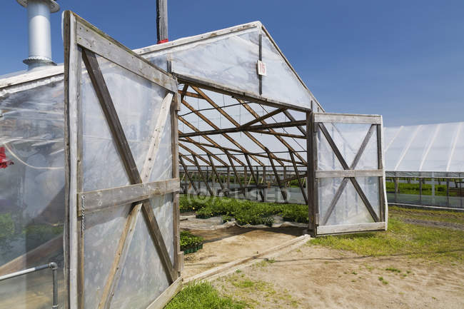 Opened doors on a wooden framed commercial greenhouse with plants being grown in containers for sale to distributors and the public in spring, Quebec, Canada — Stock Photo