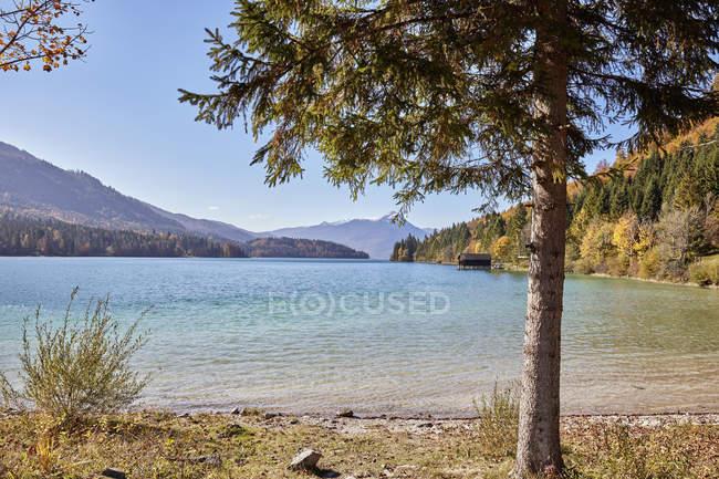 Vue de paysage du lac Walchen — Photo de stock