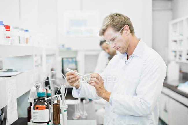Scientist examining liquid in lab — Stock Photo