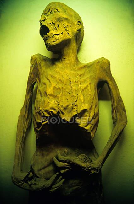 Vue grand angle de la personne momifiée morte — Photo de stock