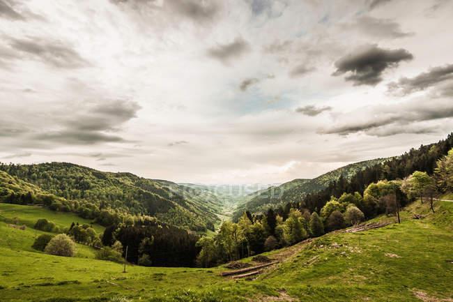 Nuages sur un paysage herbeux — Photo de stock
