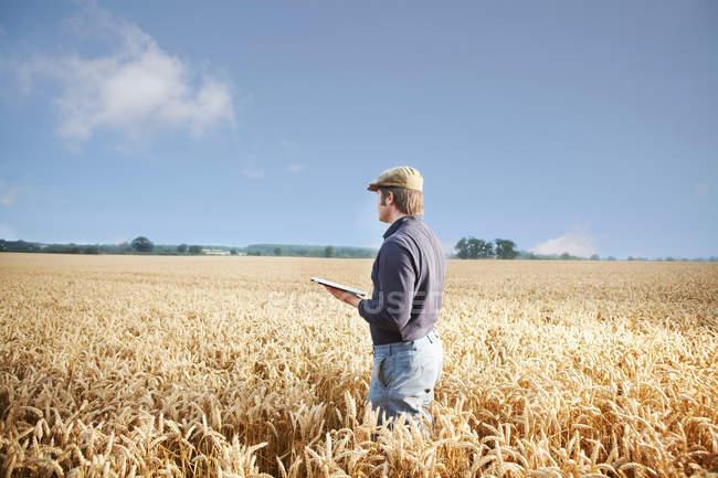 Agricultor que usa tableta en el campo - foto de stock