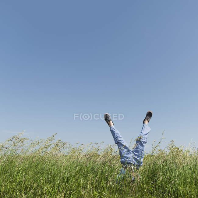 Junge macht Handstand im hohen Gras — Stockfoto