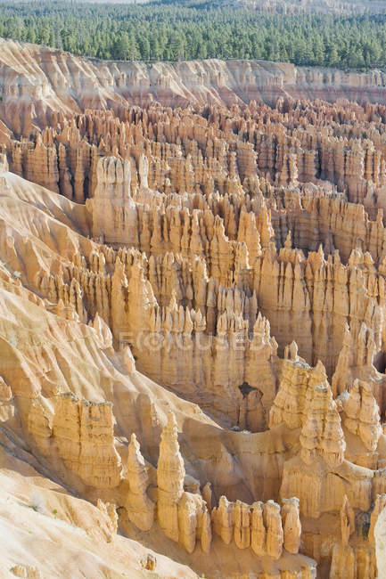 View of Hoodoos in sunlight, Bryce Canyon National Park, Utah, USA — Stock Photo