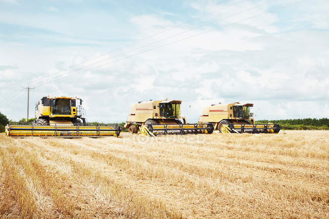 Harvesters working in crop field — Stock Photo