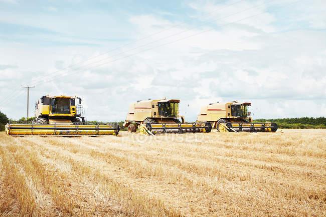 Mietitrici lavorando nel campo del raccolto — Foto stock