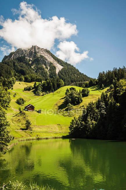 Травяной склон еще озера — стоковое фото