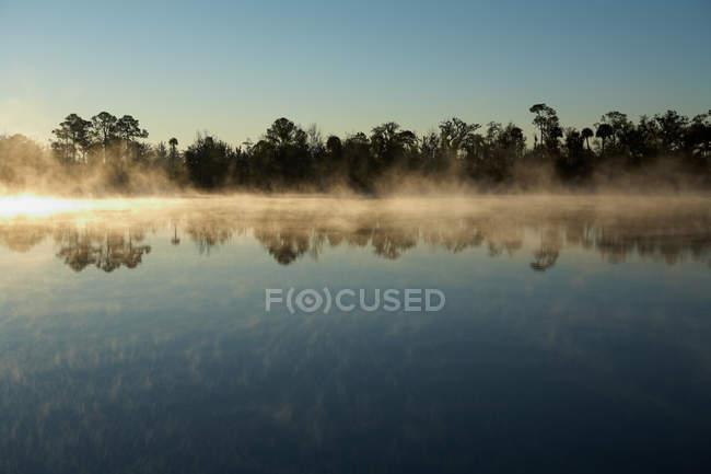 Lever de soleil sur le lac reflétant les arbres — Photo de stock