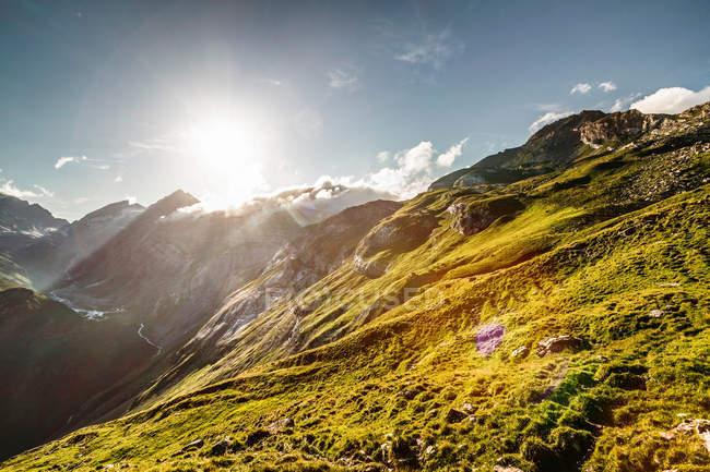 Sun rising over grassy hillside — Stock Photo