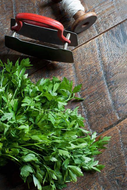Perejil fresco y cortador de hierbas - foto de stock