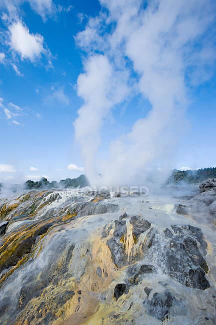 Zona termale di Whakarewarewa — Foto stock
