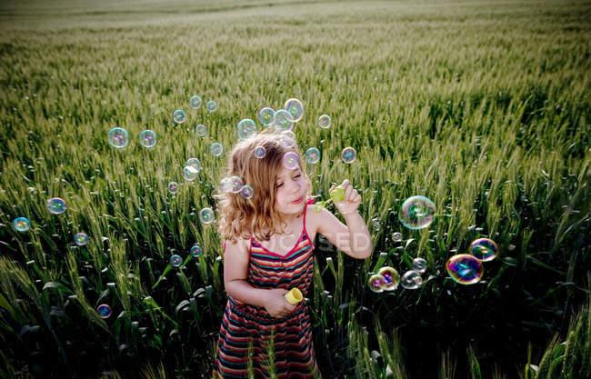 Девушка надувает пузырьки на пшеничном поле — стоковое фото