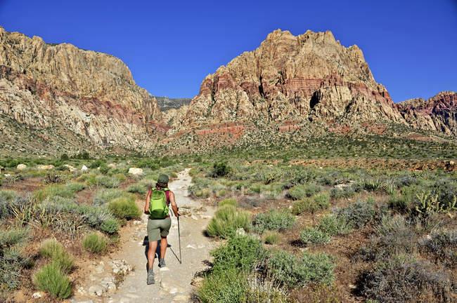 Вид сзади туристы, прогуливаясь по тропе, первый крик, Лас-Вегас, Невада, США — стоковое фото