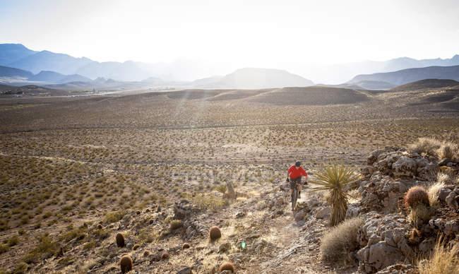 Горный байкер, Лас-Вегас, Невада, США — стоковое фото