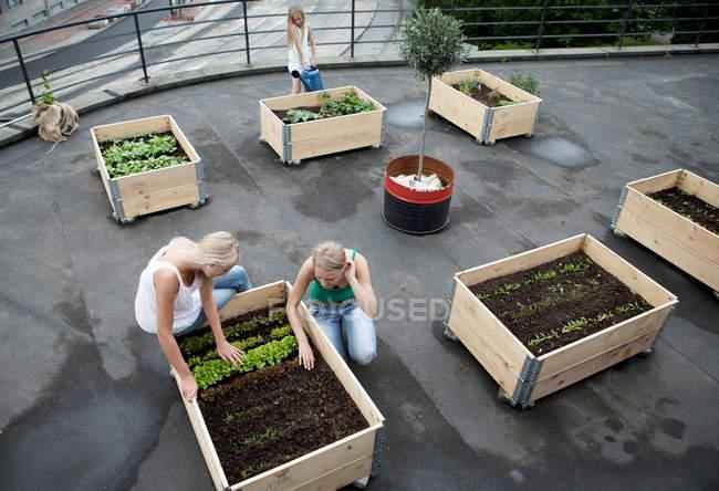 Les adolescentes travaillant dans des boîtes à plantes — Photo de stock