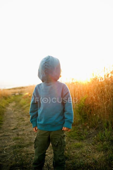 Rapaz usando capuz superior traseira para frente — Fotografia de Stock
