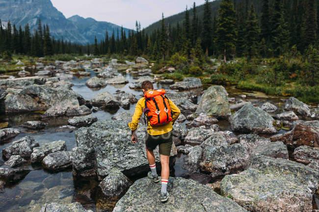 Vista posteriore dell'uomo adulto che porta lo zaino camminando sul letto roccioso del fiume, lago Morena, Banff National Park, Alberta Canada — Foto stock