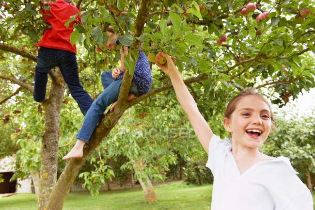 Crianças brincando na árvore de frutas no prado — Fotografia de Stock