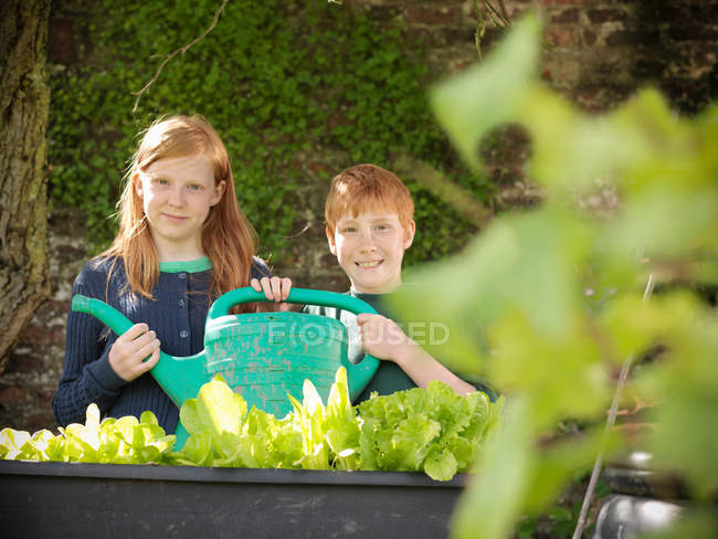Two children watering organic vegetables with watering can in garden — Stock Photo