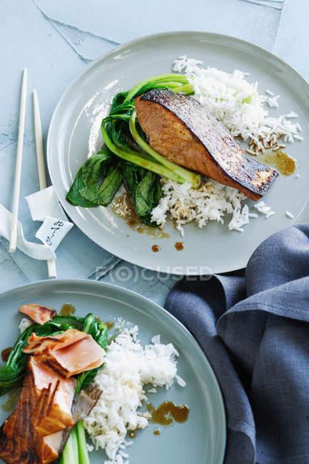 Плиты рыбы, риса и зеленью — стоковое фото