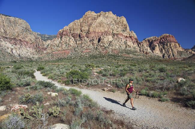 Вид сбоку туристы, прогуливаясь по тропе, первый крик, Лас-Вегас, Невада, США — стоковое фото