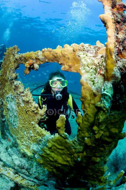 Plongeur femme nageant sous l'eau — Photo de stock