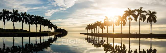 Долонями над дзеркальне відображення води — стокове фото