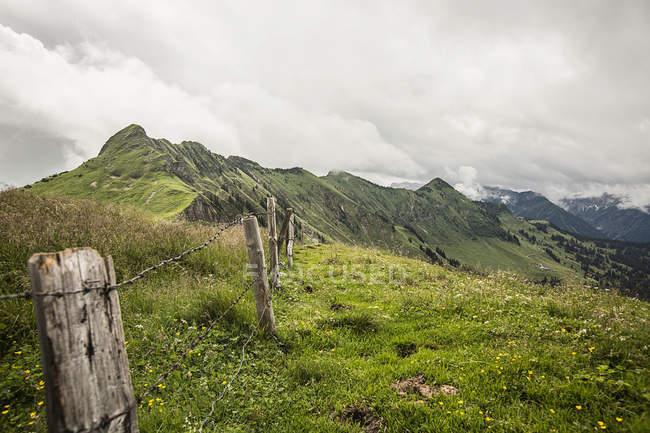 Колючого дроту на схилі трав'янисті — стокове фото