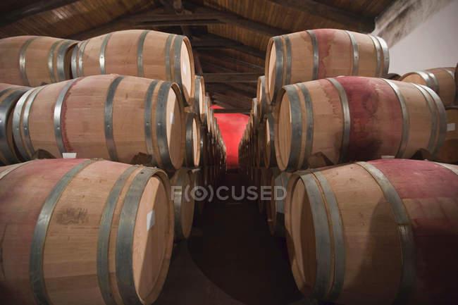 Vista de Barris de vinho na adega — Fotografia de Stock