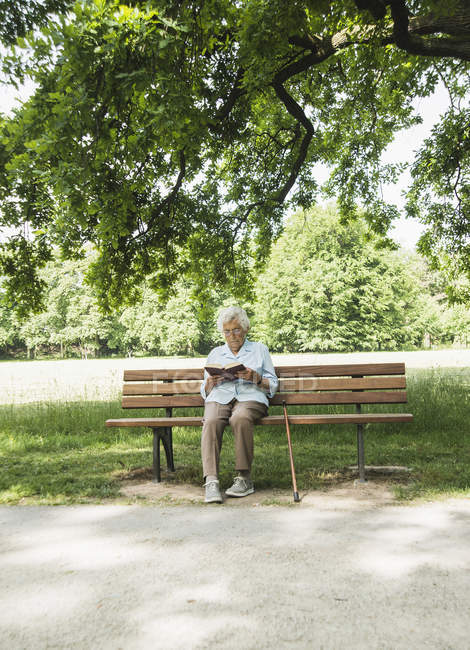 Haute femme assis sur un banc de parc lire la bible — Photo de stock