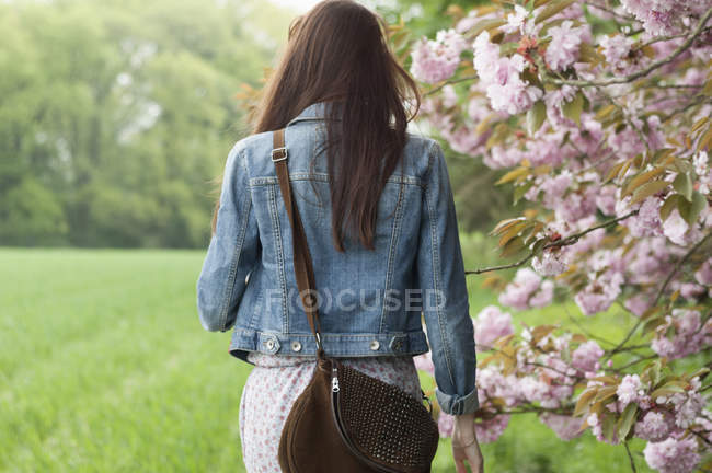 Rear view of young woman strolling in field — Stock Photo