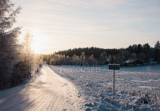 Snow covered rural road in sunlight — Stock Photo