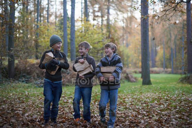 Мальчики ходят по лесу и несут деревянные бревна — стоковое фото