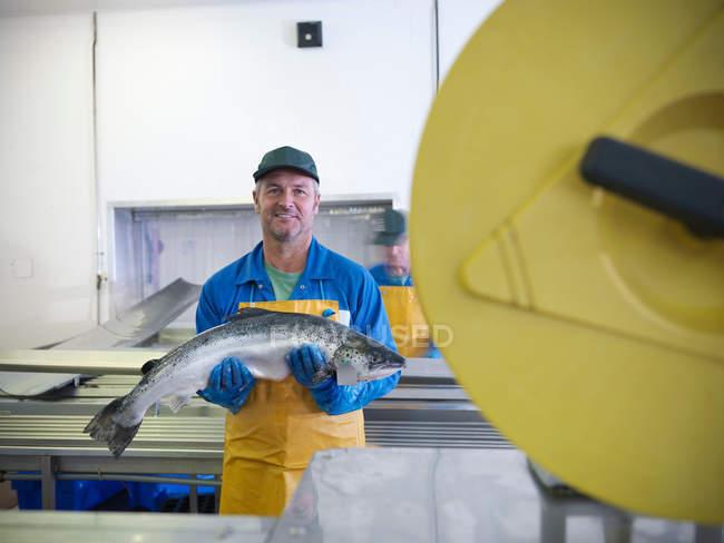 Портрет людини тримає рука вирощували шотландський лосось на виробничій лінії рибній фермі — стокове фото