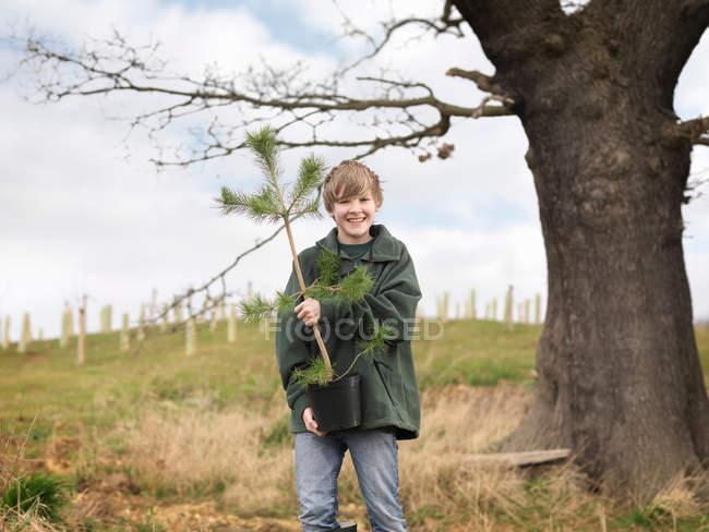 Muchacho con árbol joven - foto de stock
