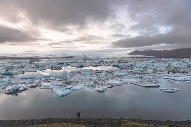Tourist looking out at icebergs on glacial lagoon — Stock Photo