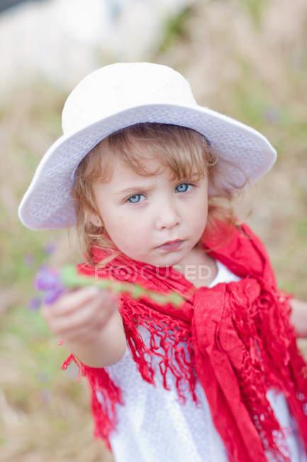 Девушка держит цветок в поле — стоковое фото