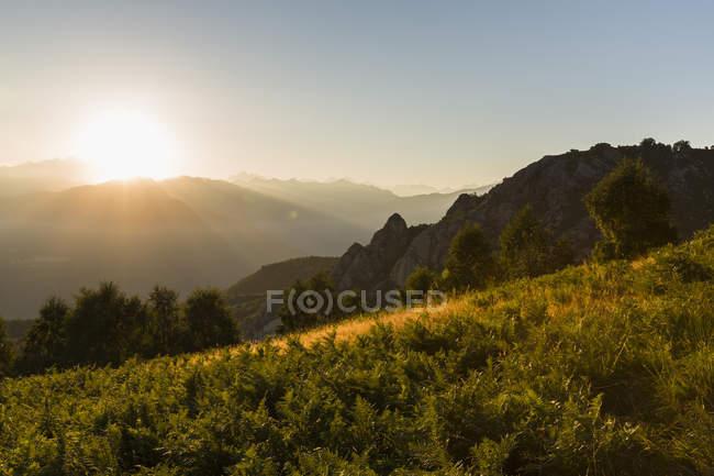 Paisagem coberta verde na luz do sol — Fotografia de Stock