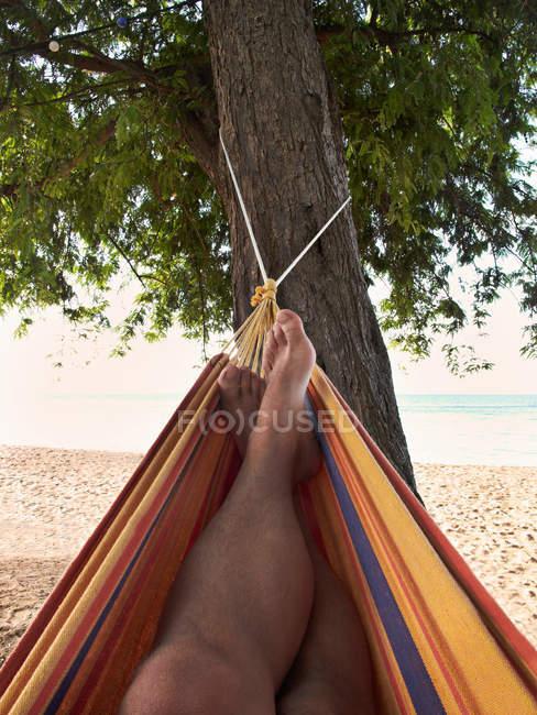 Male feet lying in hammock on beach — Stock Photo