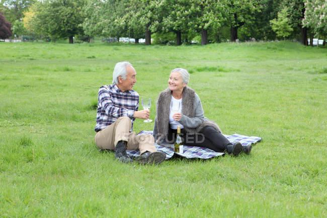 Casal mais velho tendo vinho no piquenique — Fotografia de Stock