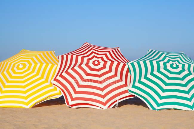 Paraguas coloridos en una fila en la playa - foto de stock