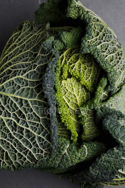 Head of cabbage on grey surface — Stock Photo
